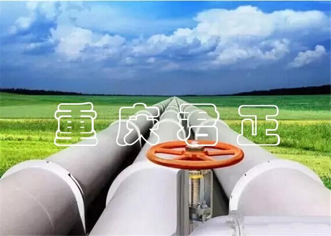 污水管道堵水气囊厂家.jpg